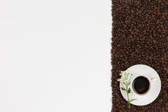 Φασόλια και λουλούδι καφέ στο άσπρο υπόβαθρο Τοπ άποψη με το διάστημα στοκ εικόνες με δικαίωμα ελεύθερης χρήσης