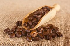 Φασόλια καφέ που ανατρέπουν από μια σέσουλα Στοκ Φωτογραφία