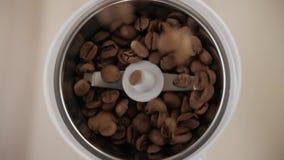 Φασόλια καφέ που χύνονται Ψημένα φασόλια καφέ που χύνονται σε έναν μύλο καφέ Κινηματογράφηση σε πρώτο πλάνο απόθεμα βίντεο