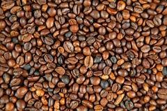 Φασόλια καφέ (σειρά) Στοκ Φωτογραφίες