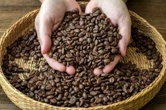 Φασόλια καφέ στα θηλυκά χέρια Στοκ Εικόνα