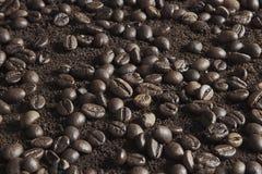 Φασόλια καφέ στη σκόνη καφέ Στοκ Εικόνες