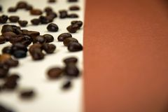 Φασόλια καφέ στο άσπρο και καφετί υπόβαθρο στοκ φωτογραφίες