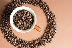 Φασόλια καφέ στο άσπρο κύπελλο στοκ φωτογραφίες με δικαίωμα ελεύθερης χρήσης