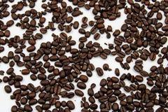 Φασόλια καφέ ψητού στοκ εικόνα