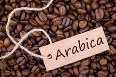 Φασόλια καφέ, Arabica Στοκ Εικόνες