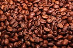 Φασόλια του coffe στοκ φωτογραφία με δικαίωμα ελεύθερης χρήσης
