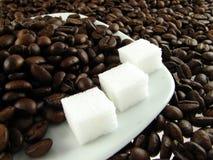 φασόλια coffe Στοκ Εικόνα