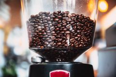 Φασόλι καφέ στην ηλεκτρική μηχανή μύλων καφέ στον καφέ Στοκ Εικόνα