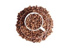 Φασόλι καφέ Στοκ εικόνα με δικαίωμα ελεύθερης χρήσης