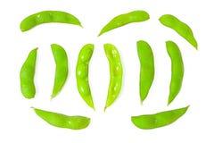 φασόλι πράσινο στοκ φωτογραφία με δικαίωμα ελεύθερης χρήσης