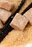 Φασόλια βανίλιας και καφετιά ζάχαρη βανίλιας Στοκ φωτογραφία με δικαίωμα ελεύθερης χρήσης