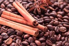 Φασόλια και καρυκεύματα καφέ Στοκ εικόνες με δικαίωμα ελεύθερης χρήσης