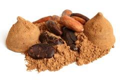 Φασόλια κακάου, σκόνη κακάου και γλυκά σοκολάτας Στοκ εικόνα με δικαίωμα ελεύθερης χρήσης