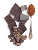 Φασόλια κακάου σοκολάτας και σκόνη κακάου Στοκ Εικόνες