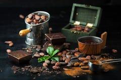 Φασόλια κακάου, σοκολάτα και σκόνη κακάου Στοκ φωτογραφίες με δικαίωμα ελεύθερης χρήσης