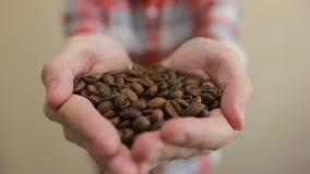 Φασόλια καφέ - άτομο που παρουσιάζει ψημένη μέσο χούφτα φασολιών καφέ φασόλια καφέ εκμετάλλευσης ατόμων στα χέρια απόθεμα βίντεο