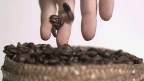 Φασόλια καφέ έξοχο σε σε αργή κίνηση που κρατιούνται απόθεμα βίντεο