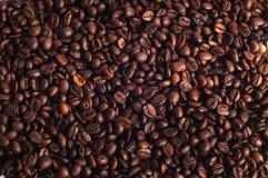 Φασόλια καφέ δίπλα-δίπλα Στοκ Εικόνες