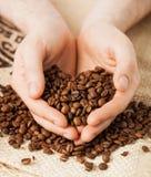 Φασόλια καφέ εκμετάλλευσης ατόμων στοκ φωτογραφίες με δικαίωμα ελεύθερης χρήσης