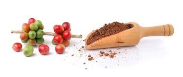 Φασόλια καφέ και στιγμιαίος καφές στη σέσουλα στοκ εικόνα με δικαίωμα ελεύθερης χρήσης