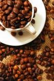 Φασόλια καφέ σε ένα φλυτζάνι Στοκ Φωτογραφίες