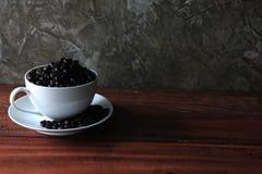 Φασόλια καφέ σε ένα φλυτζάνι Στοκ Εικόνα