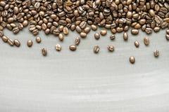 Φασόλια καφέ στο δάσος Στοκ φωτογραφία με δικαίωμα ελεύθερης χρήσης
