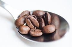 Φασόλια καφέ στο κουτάλι καφέ στο άσπρο υπόβαθρο Στοκ εικόνες με δικαίωμα ελεύθερης χρήσης