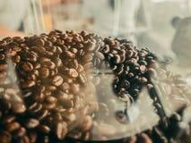 Φασόλια καφέ στο πλαστικό εμπορευματοκιβώτιο Στοκ εικόνες με δικαίωμα ελεύθερης χρήσης