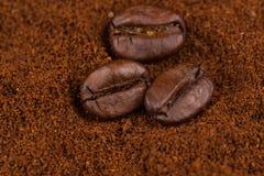 Φασόλια καφέ στο σωρό του εδάφους Στοκ φωτογραφία με δικαίωμα ελεύθερης χρήσης