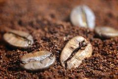 Φασόλια καφέ στο υπόβαθρο επίγειου καφέ Στοκ φωτογραφία με δικαίωμα ελεύθερης χρήσης