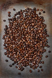 Φασόλια καφέ στο φύλλο ψησίματος Στοκ Εικόνες