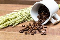 Φασόλια καφέ στο φλυτζάνι καφέ Στοκ Φωτογραφίες