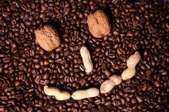 Φασόλια καφέ φασολιών καφέ Στοκ φωτογραφία με δικαίωμα ελεύθερης χρήσης