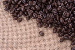 Φασόλια καφέ, arabica ψητού καλύτερος καφές της Ταϊλάνδης καφέ Στοκ φωτογραφίες με δικαίωμα ελεύθερης χρήσης
