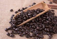 Φασόλια καφέ, arabica ψητού καλύτερος καφές της Ταϊλάνδης καφέ Στοκ εικόνα με δικαίωμα ελεύθερης χρήσης