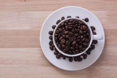 Φασόλια φλιτζανιών του καφέ Στοκ Εικόνες