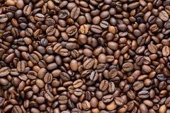 Φασόλια Coffe στοκ εικόνες με δικαίωμα ελεύθερης χρήσης