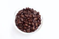 Φασόλι καφέ στο κύπελλο στο άσπρο υπόβαθρο Στοκ Εικόνες