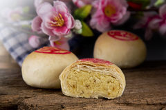 Φασόλι μπισκότων με το λουλούδι Στοκ Φωτογραφίες