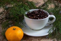 Φασόλι φλιτζανιών του καφέ με tangerine και το χριστουγεννιάτικο δέντρο Στοκ φωτογραφίες με δικαίωμα ελεύθερης χρήσης
