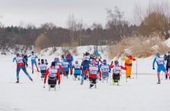 11 Φεβρουαρίου 2017 ετήσιος μαραθώνιος σκι Russialoppet Nikolov Perevoz 2017 φυλών σκι κτημάτων τέχνη-Veretevo Φυλή Paralympic Στοκ εικόνα με δικαίωμα ελεύθερης χρήσης