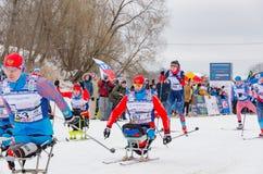 11 Φεβρουαρίου 2017 ετήσιος μαραθώνιος σκι Russialoppet Nikolov Perevoz 2017 φυλών σκι κτημάτων τέχνη-Veretevo Φυλή Paralympic Στοκ Φωτογραφίες