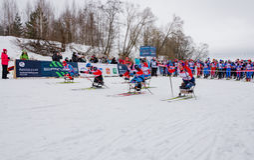 11 Φεβρουαρίου 2017 ετήσιος μαραθώνιος σκι Russialoppet Nikolov Perevoz 2017 φυλών σκι κτημάτων τέχνη-Veretevo Φυλή Paralympic Στοκ Εικόνες