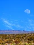 Φεγγάρι ερήμων Sonora Στοκ εικόνα με δικαίωμα ελεύθερης χρήσης