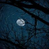 3/4 φεγγάρι με το ίχνος αστεριών Στοκ Εικόνες