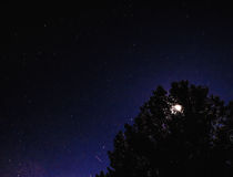 Φεγγάρι πίσω από το δέντρο στο νυχτερινό ουρανό σε Σαραγόσα Στοκ εικόνα με δικαίωμα ελεύθερης χρήσης