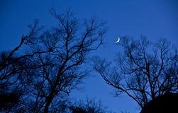 Φεγγάρι όπως ένα αγκίστρι Στοκ Φωτογραφίες