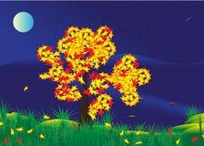 Φεγγάρι. διανυσματική απεικόνιση